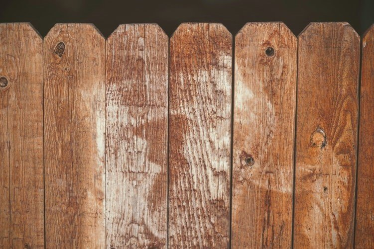 Wooden Fence Maintenance Tips To Keep Your Fence In Top Shape